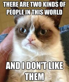 Grumpy Cat – Two kinds of people
