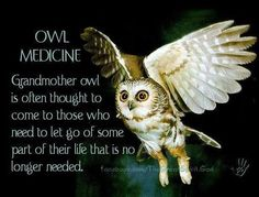 A Little Owl Medicine for Your Day | Witches Of The Craft® - Pinned by The Mystic's Emporium on Etsy