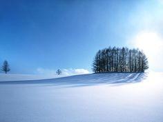 snow, Hokkaido, Japan - 70 Let your seductive beautiful photographs Winter Wallpaper Hd, Scenery Wallpaper, Landscape Wallpaper, Hd Wallpaper, Desktop Wallpapers, Desktop Photos, Wallpaper Maker, Forest Wallpaper, Black Wallpaper