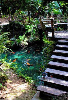 Red Koi Gardens-Redlands, Fl