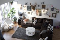 eclectic living room. This idea I might even allow Jason to put his deer mount in the living room.