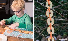 Nu het weer kouder is, is het leuk om samen met je kind wat te maken voor de vogels. Dit keer hebben we wat ideetjes voor vogelvoer maken met fruit.