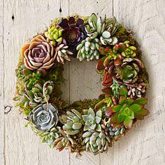 succulent wreath - so pretty