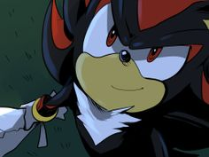 Shadow the Hedgehog. What an adorable smile. :)
