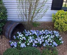 Любая старая кадка или даже просто ненужная бочка, плюс небольшой куст стелющихся цветов — и у вас уже красивый цветочный ручей прямо под окнами дома.