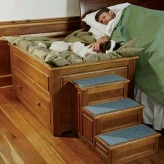 @Brianna Leonard Bear needs this, but he does not need the stairs.