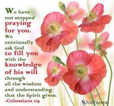 <3 <3 <3 Colossians 1:9-12 https://www.biblegateway.com/passage/?search=Colossians+1%3A9-12&version=NIVcol 1 v 9 - Google 搜尋