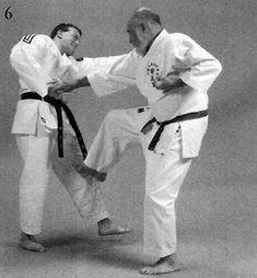 Gaiwan nagashi uke, chūdan gyaku zuki, kansetsu geri Kicks