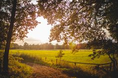 Hinrich Carstensen Photography » A Summer's Tale Festival 2015