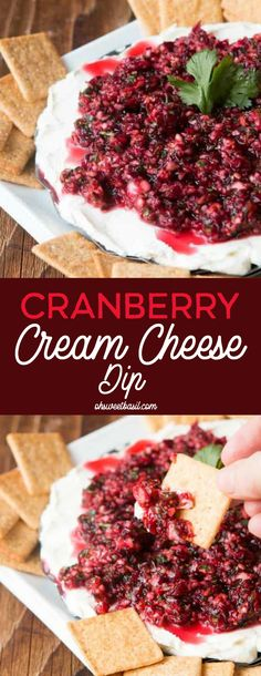 Cranberry Cream Cheese Dip – Oh Sweet Basil It's the ultimate holiday appetizer! Our Cranberry Cream Cheese Dip full of cranberries, orange zest, jalapenos and mixed with a creamy cream cheese. Dip your wheat thins into this dip and you'll be addicted! Creme Cheese, Cranberry Cream Cheese Dip, Jalapeno Cream Cheese Dip, Cranberry Salsa, Cream Cheese Stuffed Jalapenos, Cream Cheese Dips, Cranberry Recipes, Thanksgiving Appetizers, Gourmet