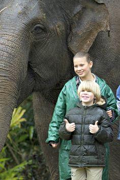 Steve Irwin Death Footage   Bindi and Bob Irwin Steve Irwins son continues wildlife warrior ...