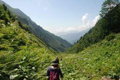 Doğa yürüyüşü Black Sea, Getting Out, Hiking, Tours, Explore, Adventure, Mountains, World, Places