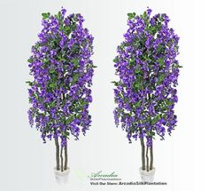 TWO 65 Wisteria Real Wood Trunks Artificial Trees each with approx 105 flower clusters *** This is an Amazon Affiliate link. Read more at the image link.