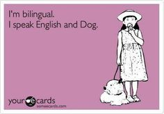 I speak english and dog