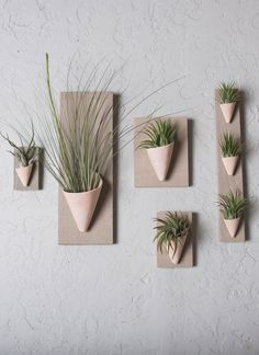 wall planter, handmade in ceramic with a wood backing. Air plant included. Available in various colors and sizes. #portland #carterandrose