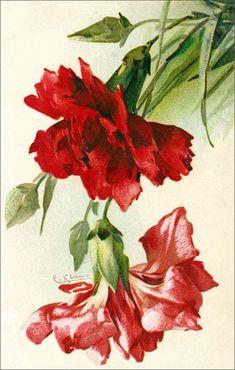 Catharina Klein.цветы-6. Обсуждение на LiveInternet - Российский Сервис Онлайн-Дневников