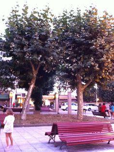 Parque De Luanco