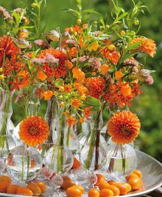 Orange_Asclepias, Dahlia, Ornithogalum dubium, Sandersonia and… Beautiful Flower Arrangements, Floral Arrangements, Beautiful Flowers, Summer Flowers, Fresh Flowers, Green And Orange, Orange Color, Fresh To Go, Colorful Garden