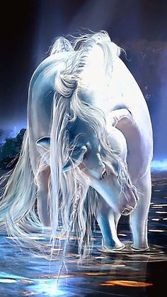 unicorn fantasy art via Michelle Webb Unicorn And Fairies, Unicorn Fantasy, Unicorn Horse, Unicorns And Mermaids, Unicorn Art, Magical Unicorn, White Unicorn, Unicorn Crafts, Unicorn Decor