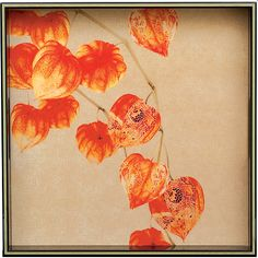 Rock Flower Paper Chinese Lantern Square Tray