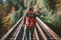 benchandcompass:  autumn tracks.