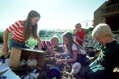 Natural Math: 100+ Activities and Resources - math through play, everyday math