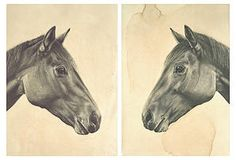 One Kings Lane - Color-Rich Contemporary Art - Meagan Donegan, Horse Diptych