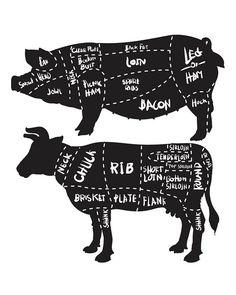 Off Sale Cut of meat set. pork and beef cuts diagram and butchery set. Butche – My CMS Beef Cuts Diagram, Pork Meat, Meat Loaf, Meat Shop, Butcher Shop, Meat Butcher, Olive Oil Cake, Beef Jerky, Meat Recipes
