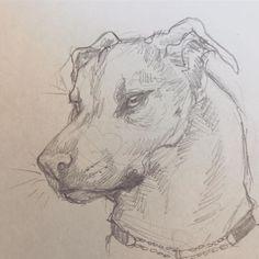 Publicação do Instagram de Imaginary Ambience • 25 de Fev, 2019 às 10:26 UTC Drawings, Instagram Posts, Art, Sketches, Drawing, Portrait, Paintings, Painting, Draw