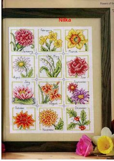 Gallery.ru / Фото #4 - цветочный календарь - irisha-ira