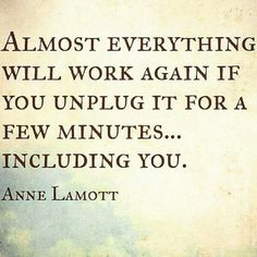 """Almost everything will work again if you unplug it for a few minutes... including you."" Anne Lamott"