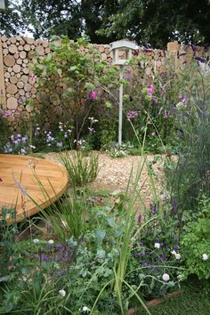 Hampton Court Flower Show, Building Design, Stepping Stones, City, Garden, Outdoor Decor, Flowers, Home Decor, Stair Risers