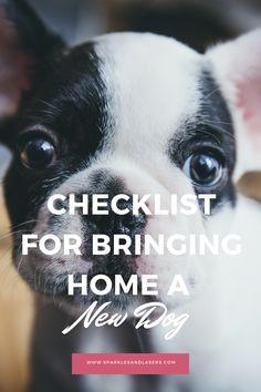 Checklist: Bringing Home a New Dog