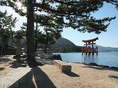 Trips in JAPAN | Aikido | Voyages au JAPON