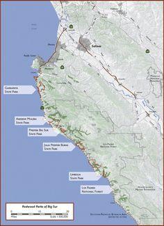 Big Sur Redwoods Hikes
