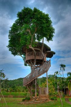 Tree house at Rafael's Farm in Eastern Visayas, Philippines.