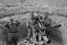 Finnish anti-aircraft gunners near the 20-mm anti-aircraft gun (2 cm FlaK 30, the German production) are watching in Mikkeli (Mikkeli).