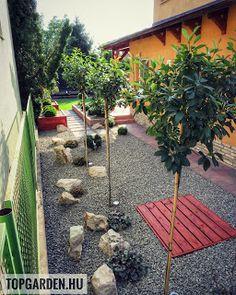 * Csináld magad kertépítés *: Kertépítés ötletek Patio, Garden, Outdoor Decor, Modern, Plants, Home Decor, Garten, Trendy Tree, Decoration Home