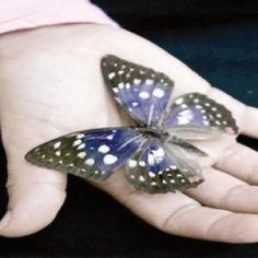 الافرازات المهبلية أسبابها و علاجها