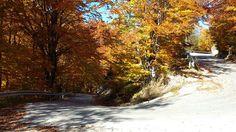 Hairpin on Dambovicioara-Ciocanu climb. Arges, Romania