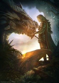Elf knight and Dragon