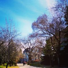 Edmonton, Alberta, Canada - outside the Faculty of Law building at the University of Alberta