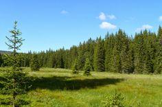 Sumava Mountains Czech Republic  relaxing nature