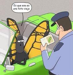 Mariposa con licencia - Foto vieja #Spanish jokes #chistes