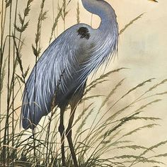The beauty and grace of a Great Blue Heron standing in tall grass along a driftwood shore. Recreated as a fine art image by Fine Art America from an original watercolor by artist James Williamson. Driftwood Shores, Flying Bird Silhouette, Herons, Thread Painting, Blue Heron, Wire Art, Fine Art America, Watercolor Paintings, Sculptures