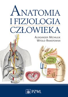 Anatomia i fizjologia człowieka.