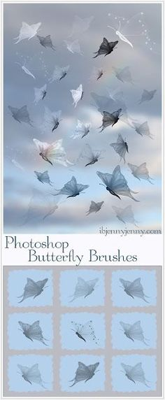 9 Free Photoshop Butterfly Brushes
