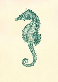 Vintage Blue Sea Horse Marine Life Illustration Sea by OceansEnd