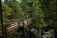 Cap Crusher - Coast Mountain Trail Running Mountain Trails, Trail Running, Garden Bridge, British Columbia, Vancouver, Exploring, Coast, Hiking, Canada