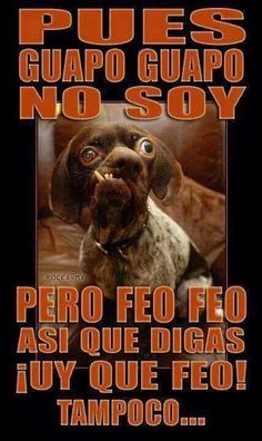 Imagenes Chistes y Memes – Memes - Mega Memeces Spanish Jokes, Funny Spanish Memes, Funny Images, Funny Pictures, Funny Pics, Mexican Jokes, Mexican Stuff, Mexicans Be Like, Funny Note